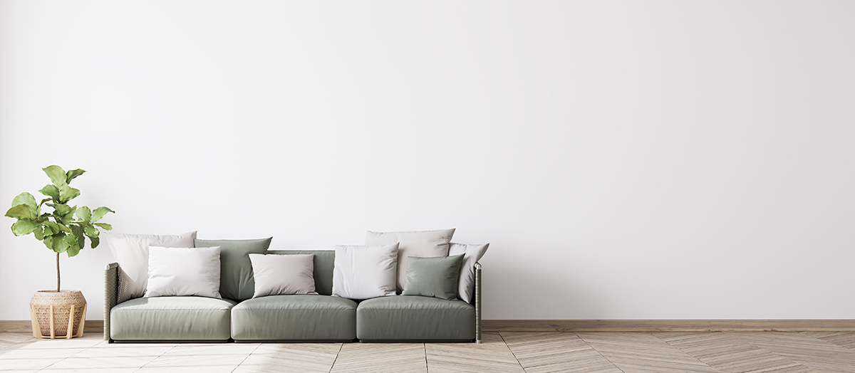 Grey couch sitting against a white wall with a green plant to the left of it.